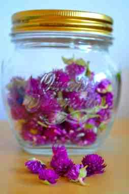 Fleur de trèfles