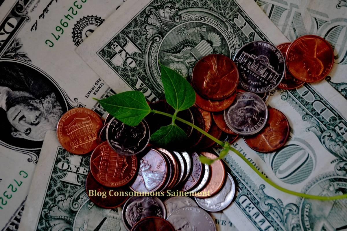 Comment réduire l'impact environnemental de votre quotidien… tout en faisant de grandes économies d'argent !